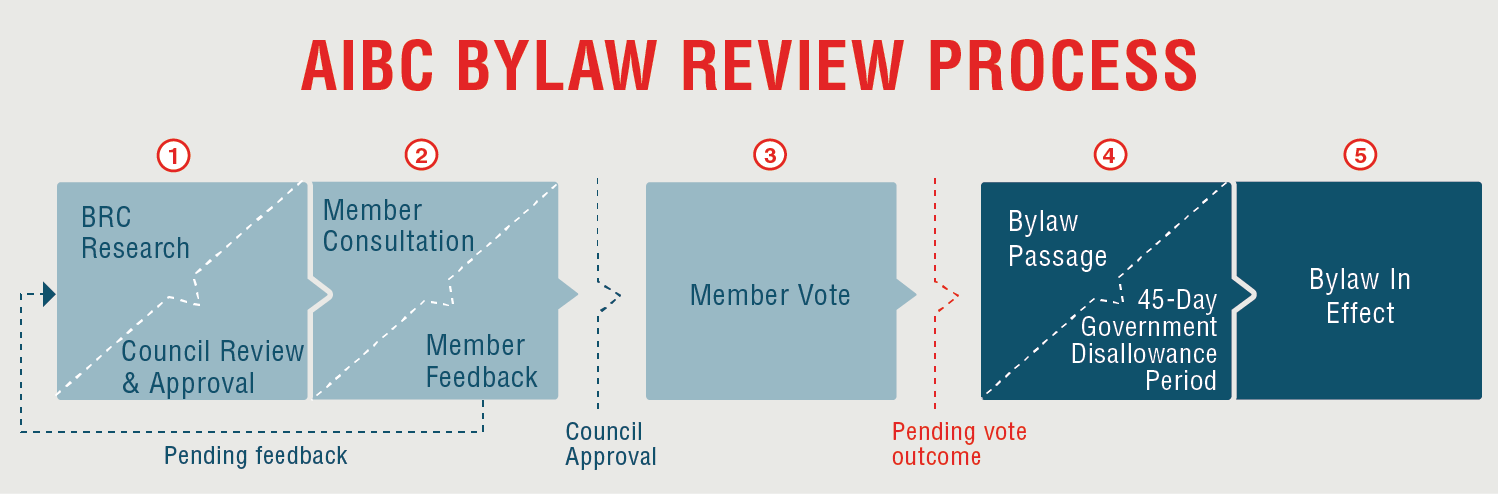 Bylaw Review Infographic_v3